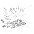 #1240 Thüringer Wald