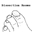 Dissection Rooms, UCL, 2009