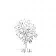 #1285 Shady Tree With eScooter